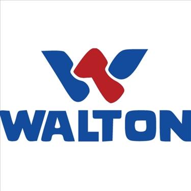 Walton Hi-Tech Industries Ltd. jobs - logo