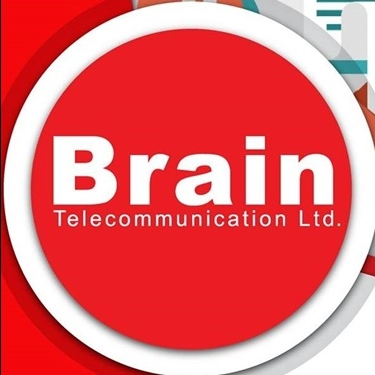 Brain Telecommunication Limited, Pakistan jobs - logo