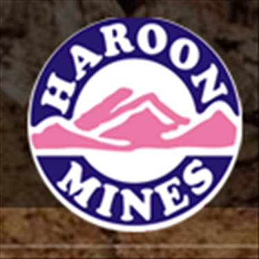 Haroon Mines (Pvt) Limited  jobs - logo